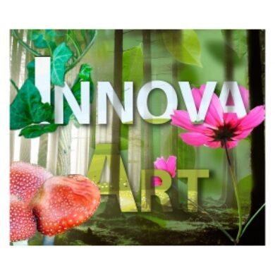 Innova Art Environmental 300x300