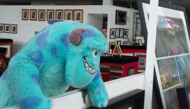 Spikey admiring a framed Kilkenny Jersey