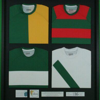 multiple jersey 5
